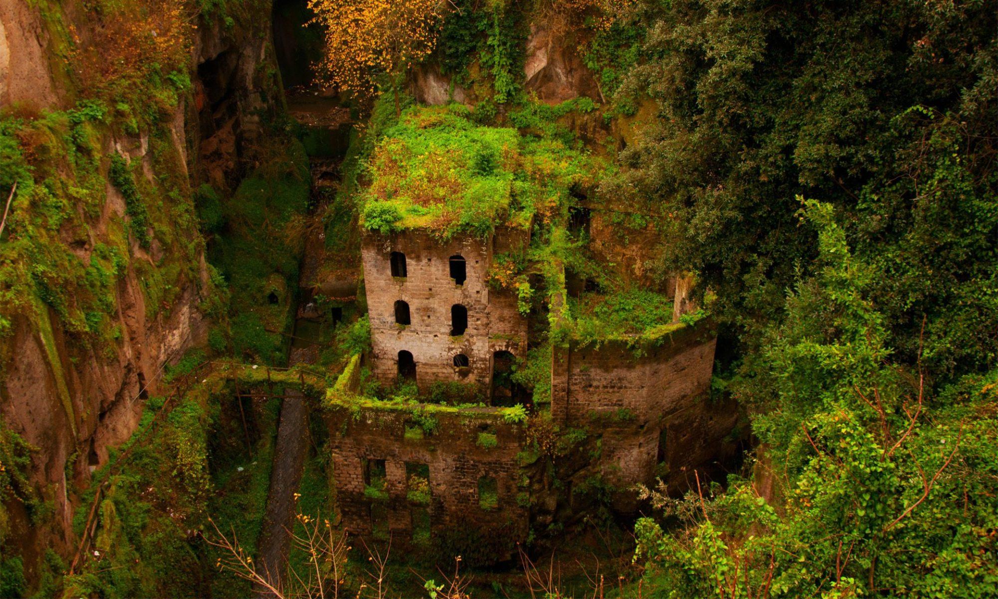 руины отживших институций